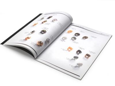 Brochure pesavento aperta 800x600